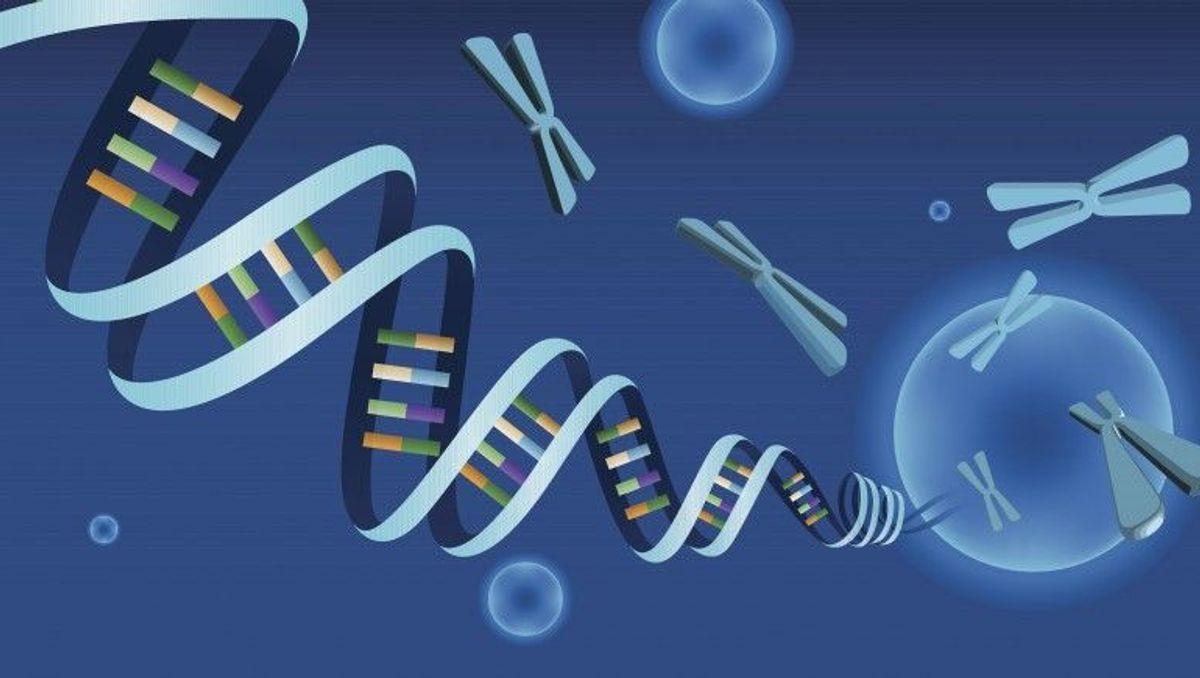 Bilan génétique: les avancées technologiques et leurs avantages